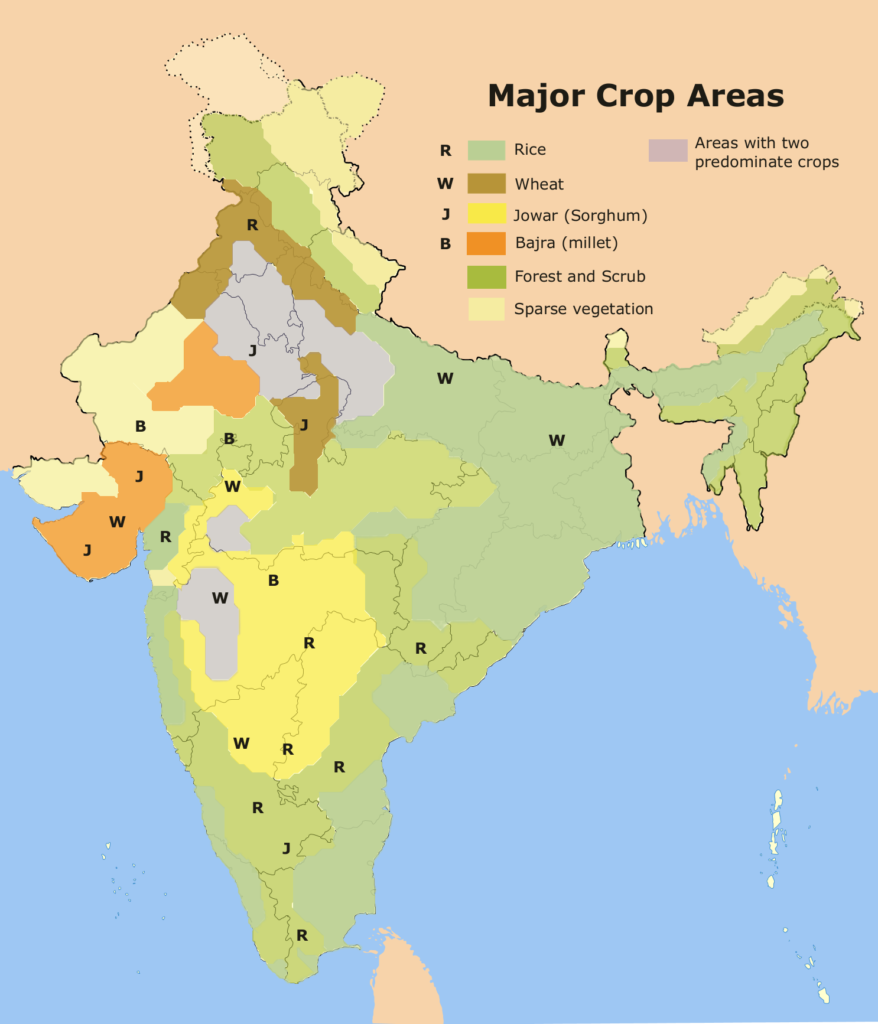 Crops which Indian farmers grow